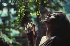 Brunette de la belleza Foto de archivo libre de regalías