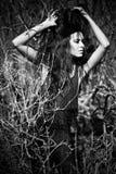 Brunette de mode dans une robe noire dans les buissons. B Photo libre de droits