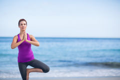Brunette doing yoga on exercise mat Royalty Free Stock Image