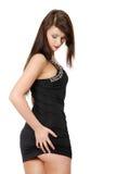 brunette dress elegant pretty wearing woman Στοκ Εικόνες