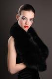 Brunette in an elegant dress Stock Image