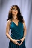 Brunette encantador con los ojos azules Imagenes de archivo