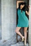 Brunette fashion model Royalty Free Stock Images
