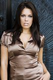 Brunette fashion model. Sexy female brunette fashion model in classy setting Stock Photo