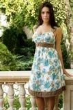 Brunette fashion model Royalty Free Stock Photos