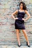 Brunette fashion model Royalty Free Stock Image