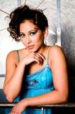 Brunette Fashion Model Woman Royalty Free Stock Photo