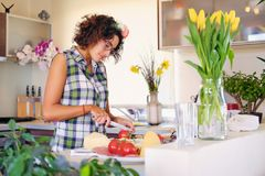 Brunette female in eyeglasses making salad from vegetables in the home kitchen. Attractive brunette female in eyeglasses making salad from vegetables in the Royalty Free Stock Image