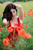 Brunette with flowers Royalty Free Stock Photography