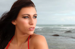 Brunette gazing into the distance Royalty Free Stock Photo