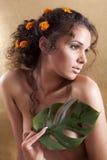 Brunette gir Royalty Free Stock Images