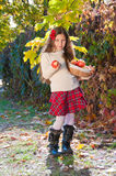 Brunette girl with basket of ripe apples Royalty Free Stock Images