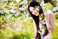 Brunette girl in blossom apple garden Stock Image