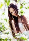 Brunette girl in blossom garden Stock Image