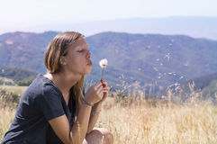 Brunette girl blowing a dandelion in the field Royalty Free Stock Image