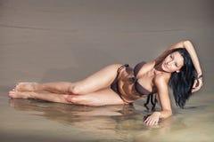 Brunette girl in brown bra Royalty Free Stock Images