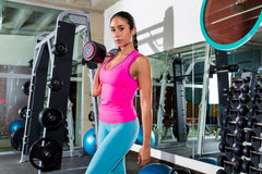 Brunette girl with dumbbell posing at gym Royalty Free Stock Image
