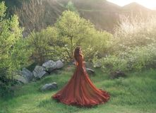 A brunette girl with a golden crown and in a red dress in a long train walking at sunset. Background wildlife, flowering. Trees, sunlight, lush grass. Artistic stock photography