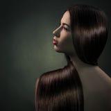Brunette Girl. Healthy Long Hair. Beautiful Brunette Girl. Healthy Long Hair Stock Photo
