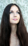Brunette Girl. Healthy Long Hair Royalty Free Stock Image