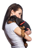 Brunette girl with her puppy isolated on white background stock images