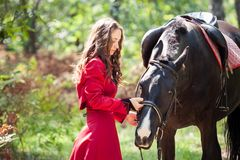 Brunette girl and horse Royalty Free Stock Photography