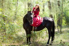 Brunette girl on horse Stock Photos