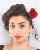 Brunette girl in ice Stock Photography
