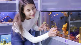 Brunette girl looking at tropical fish stock video