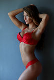 Brunette girl in red lingerie Stock Images