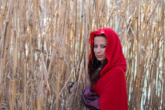 Brunette girl in a red raincoat Royalty Free Stock Images