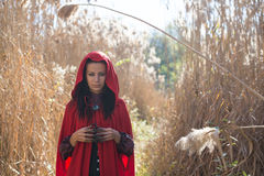 Brunette girl in a red raincoat Royalty Free Stock Photography