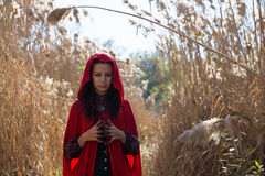 Brunette girl in a red raincoat Stock Photography