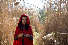 Brunette girl in a red raincoat Royalty Free Stock Image
