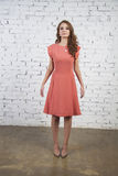 Brunette Girl in sexy pink dress Royalty Free Stock Images