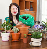 Brunette girl transplanting potted flowers stock photos