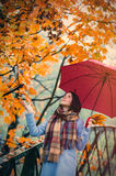 Brunette girl with umbrella Stock Photos