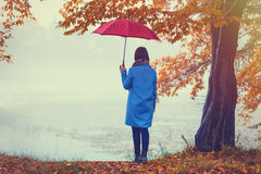 Brunette girl with umbrella Royalty Free Stock Image