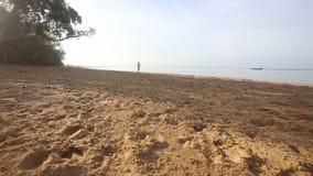 Brunette girl walks on beach at dawn stock footage