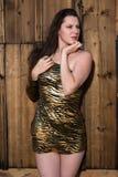 Brunette in gold animal print dress. Beautiful tall brunette in a gold leopard print dress royalty free stock photo