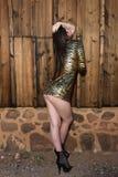 Brunette in gold animal print dress. Beautiful tall brunette in a gold leopard print dress royalty free stock image