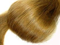Brunette hair Stock Images