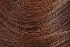 Brunette hair texture Stock Images