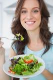 Brunette having salad Stock Photo