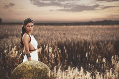 Brunette holding shield and waiting husband after war. Beautiful brunette girl among grass in meadow holding iron shield in hand and looking at camera. Woman Royalty Free Stock Images