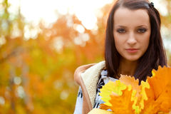 Brunette holding yellow oak leaves Stock Image