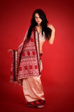 Brunette in the Indian sari. Young beautiful brunette in the indian national dress Stock Images