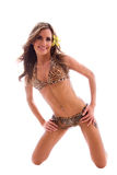 Brunette in leopard bikini. Royalty Free Stock Image