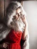 Brunette lindo Fotos de archivo
