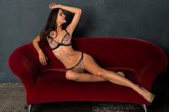 Brunette in lingerie Royalty Free Stock Image
